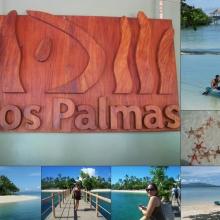 Dos Palmas Island, Palawan