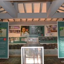 Land Mine Museum