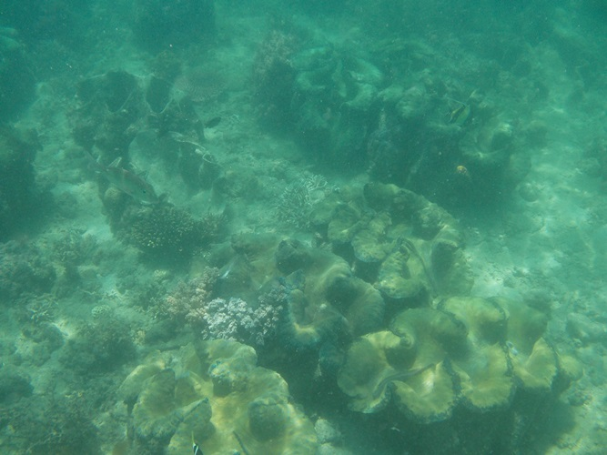 100 Islands, Alaminos (102)