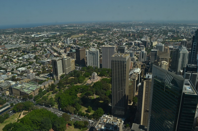 sydney tower eye  (13)